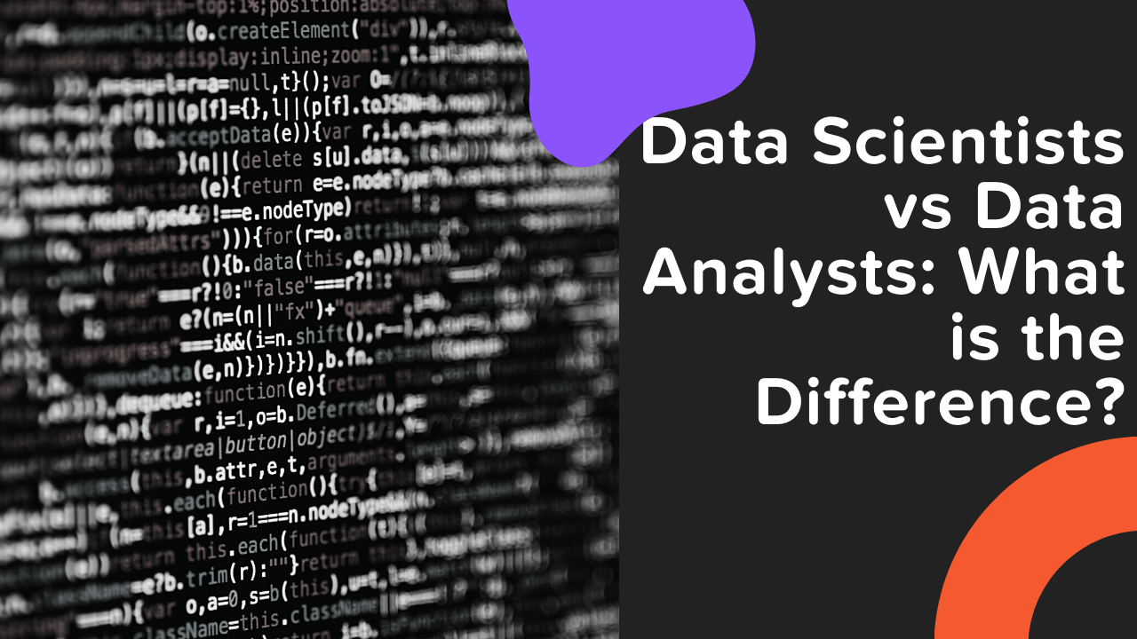 Data Scientists vs Data Analysts: What is the Difference?
